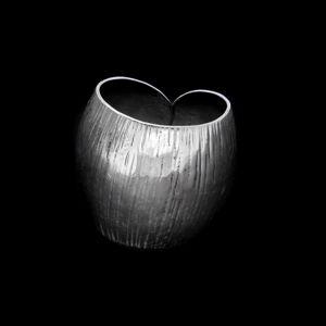 Strieborný prsteň 17125